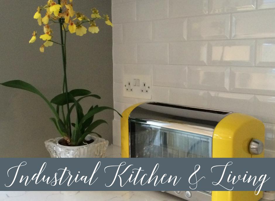 Modern Industrial Open-Plan Kitchen